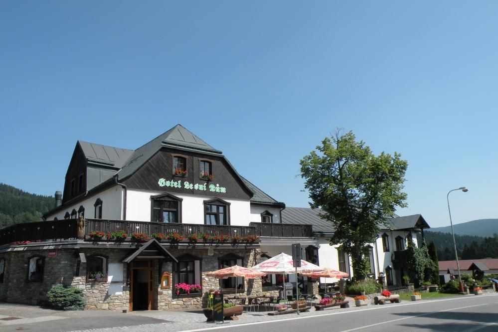 Hotel Lesní dům, Janské Lázně