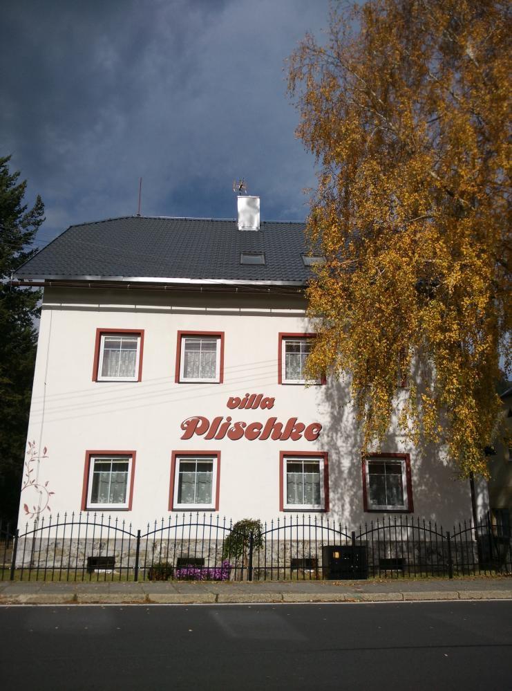 Villa Plischke, Lipová-lázně