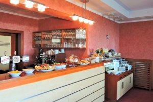 SKi apartmány Hartman, Olešnice v Orlických horách