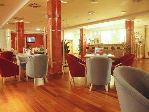 IBS Hotel Vladimir, Ústí nad Labem