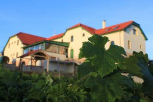 Hotel Vinohrad, Milotice